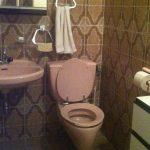 Toilette Klo Bad pupsen Stuhlgang Darmentleerung, das ist alles abtörnend für mich