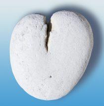 Herz aus Stein, hat er keine Gefühle?